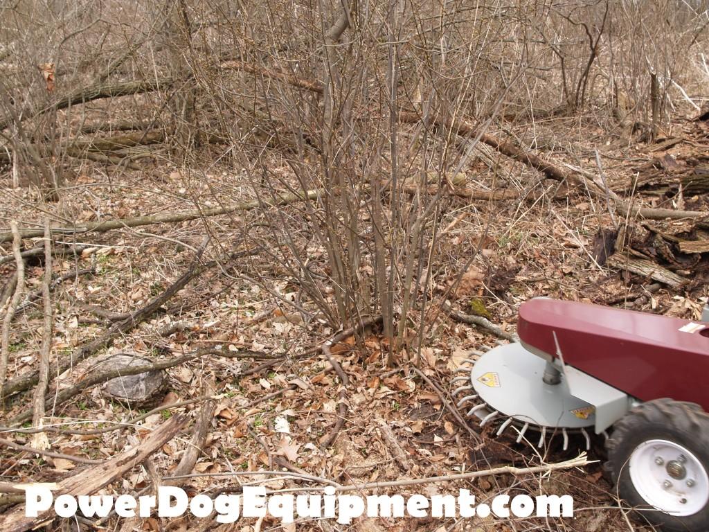 Power Dog Walk Behind Mower